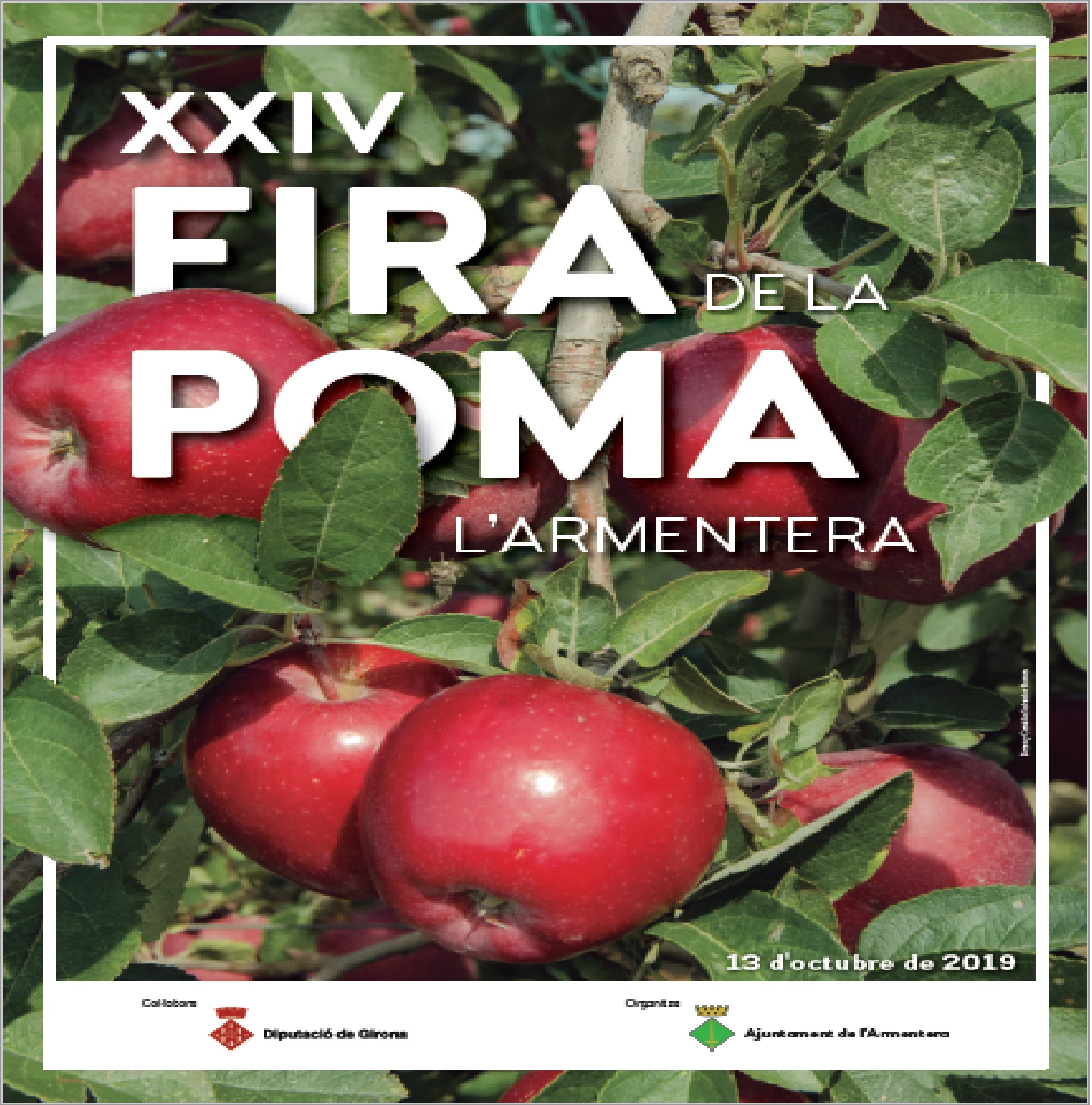 CARTELL FIRA POMA 2019